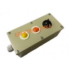 Пост управления кнопочный ПКУ 15-21-131 54У2